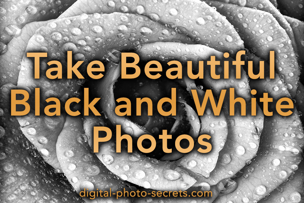 How to Take Beautiful Black and White Photos