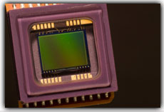 Image Sensor Size: What's the Difference?