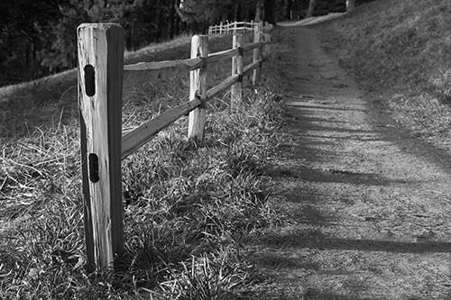 For Some Reason Fences Look Particularly Neat In Black And White The Essence Of Is That It Tends To Make An Image More Raw