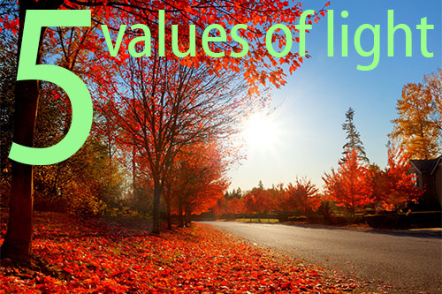 The Five Values of Light
