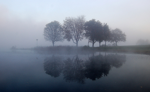How to capture photos in foggy or misty conditions