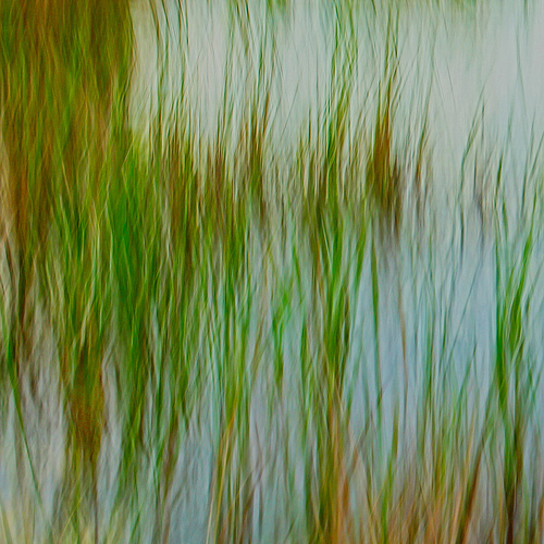 Outstanding Intentional Camera Movement Images