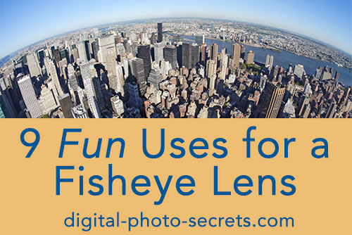 Nine Fun Uses for a Fisheye Lens