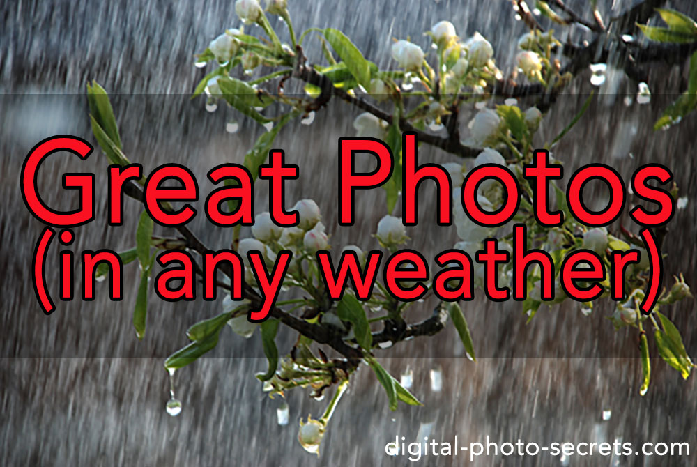 Take Great Photos (in any weather)
