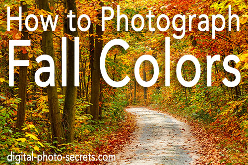 How to Photograph Fall Colors