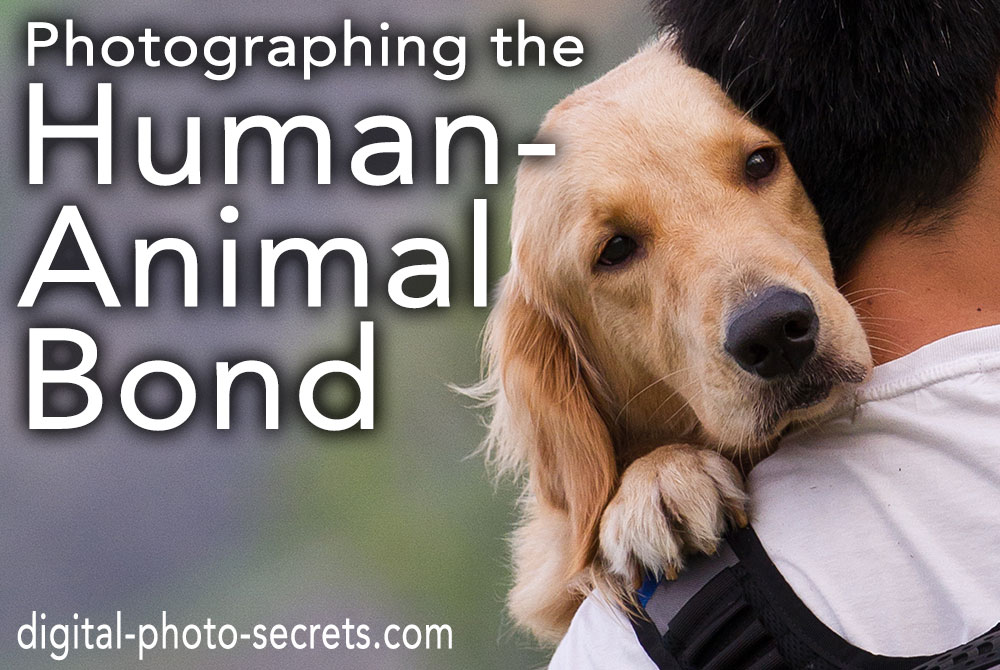 Photographing the Human-Animal Bond