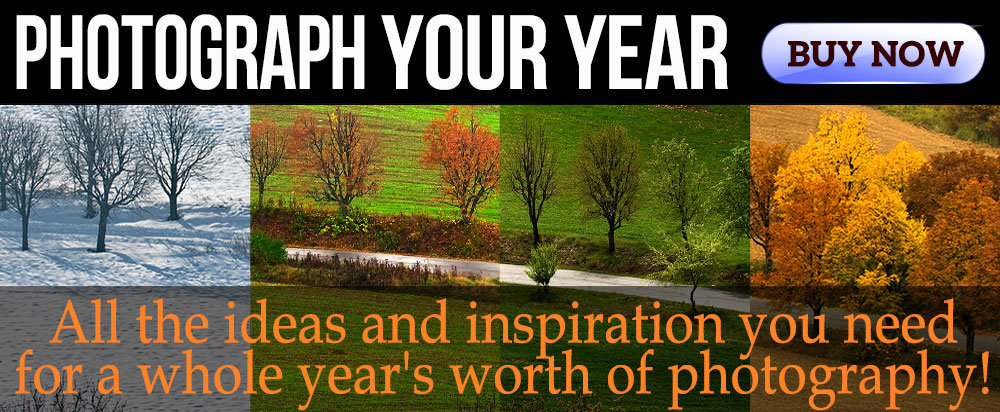 Photograph Your Year