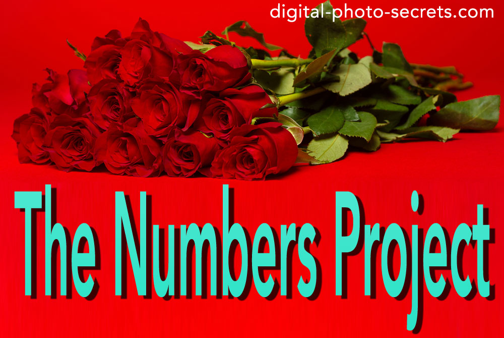 Numbers Project