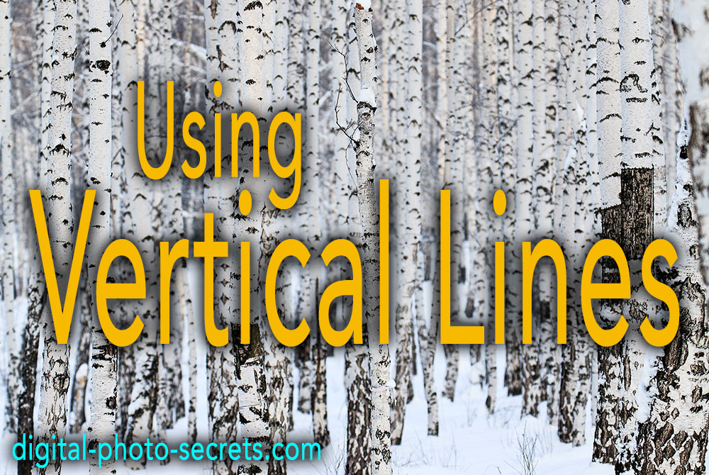 Using Vertical Lines in Your photography