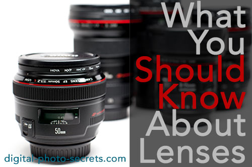 What You Should Know About Lenses