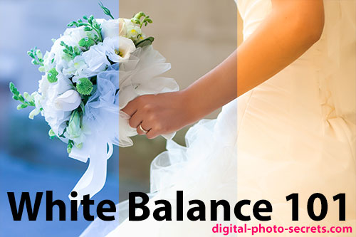 White Balance 101 – How to Get It Right